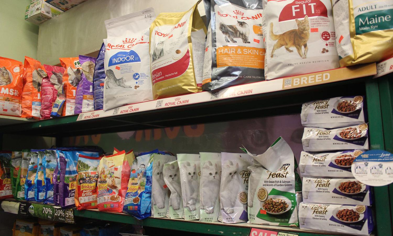 pet shops singapore